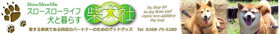 犬と暮らす柴犬社